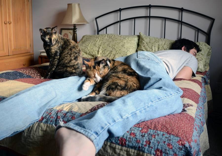 Почему мой кот спит на моих ногах? | домашние животные