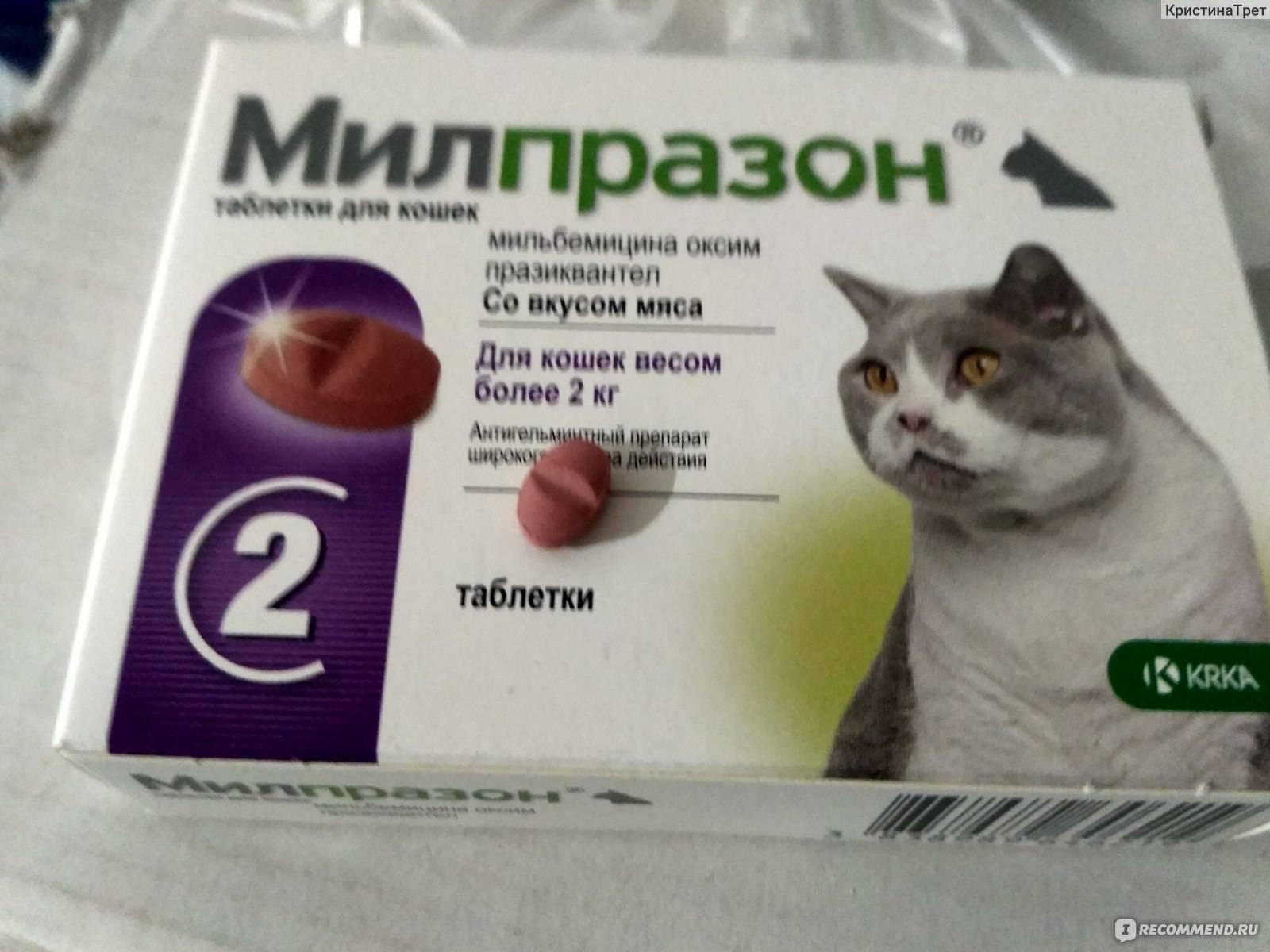 Милпразон, таблетки для кошек и котят против глистов