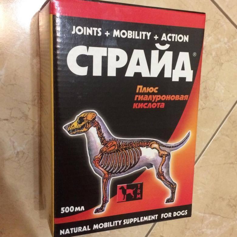 Страйд плюс для собак - купить, цена и аналоги, инструкция по применению, отзывы в интернет ветаптеке добропесик