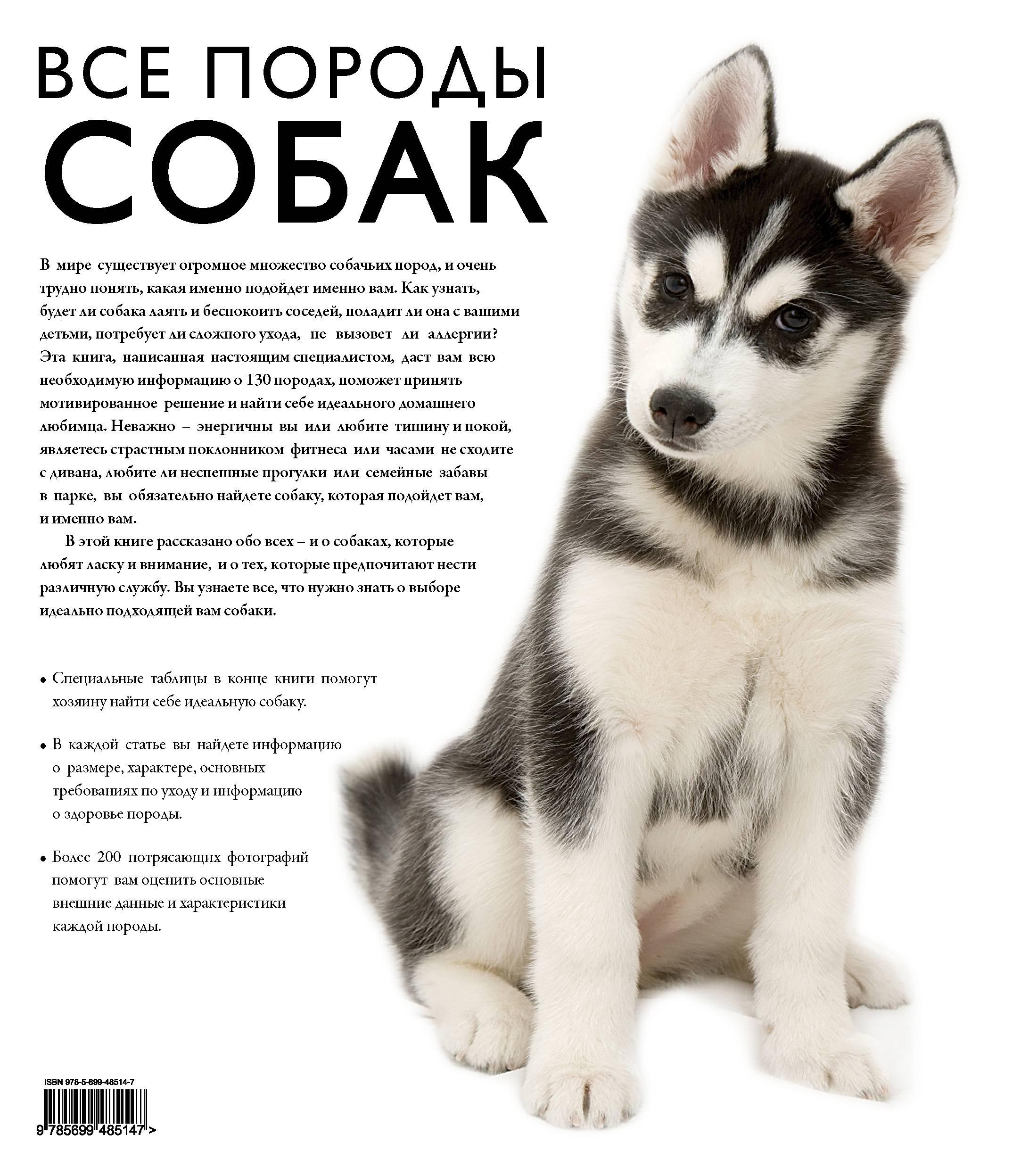 Все породы собак — каталог по алфавиту: описания и фото пород, история, характер
