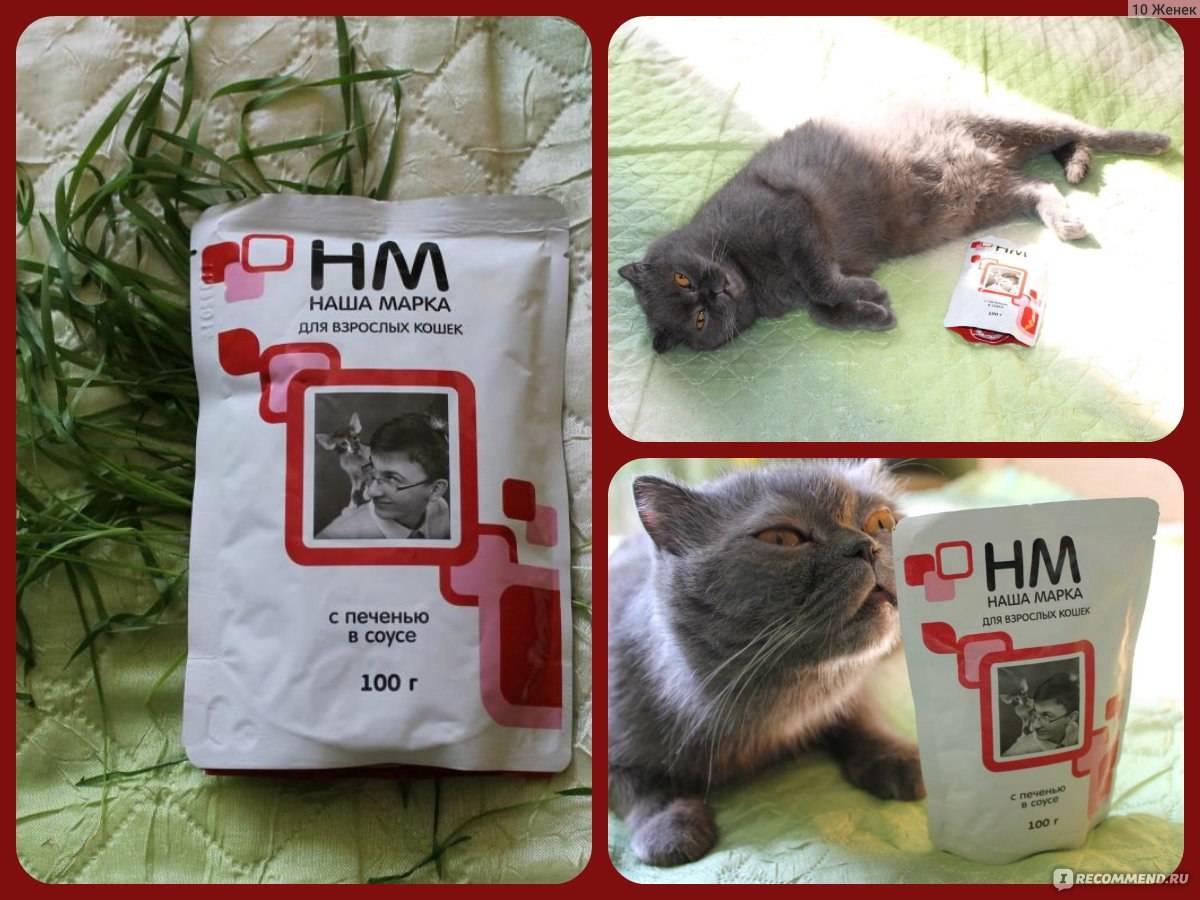 Линейка кормов для кошек отечественного производителя «наша марка»