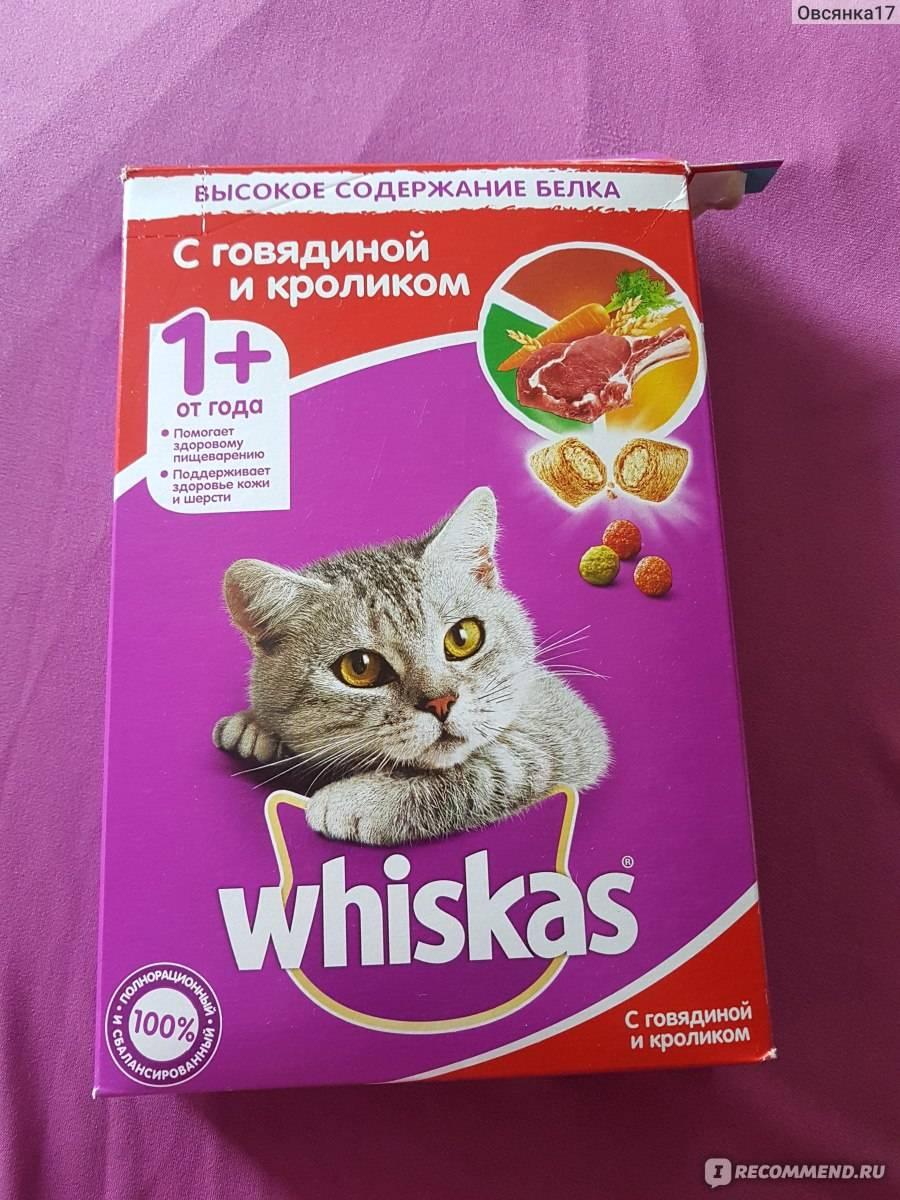 Корм вискас для котят — отзывы ветеринаров, владельцев