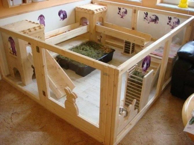Как сделать домик для морской свинки — выбор материала