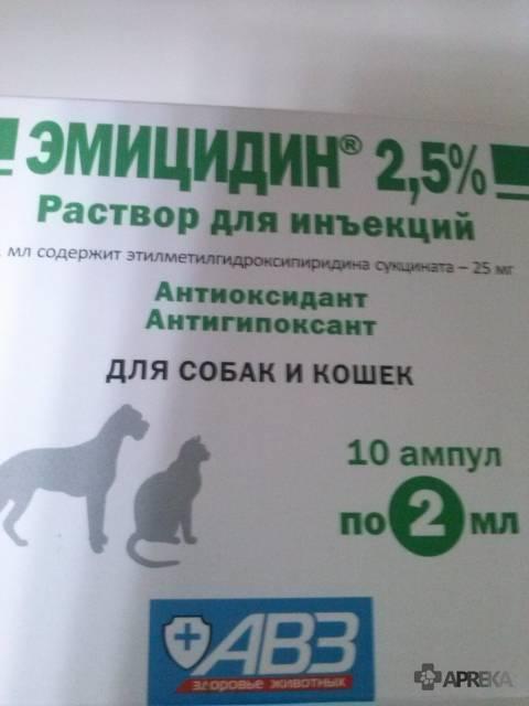 Эмицидин для кошек: инструкция по применению, особенности препарата, отзывы