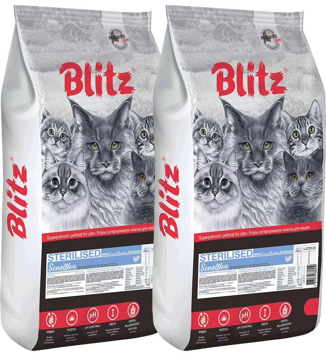 Рейтинг лучших сухих кормов для кошек