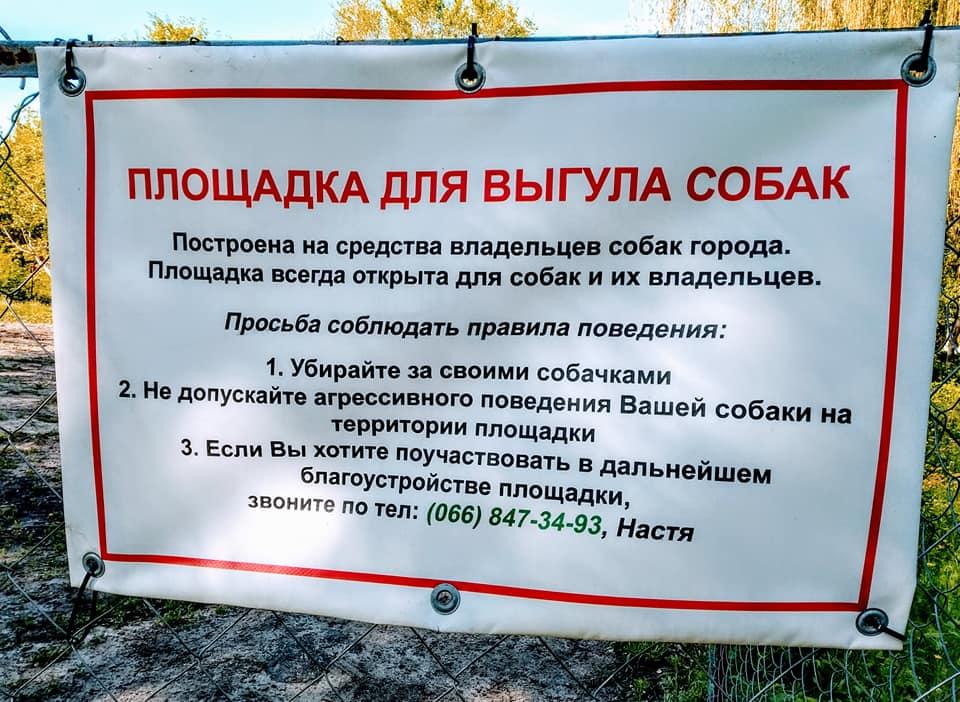 Выгул собак на придомовой территории: что говорит закон о том, каковы штрафы за прогулку там, где она запрещена?своё