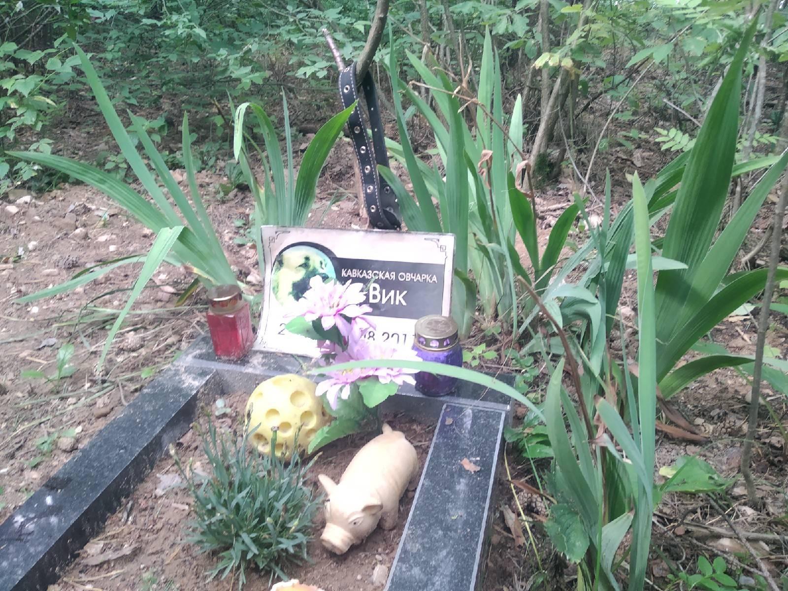 Организация похорон: как проходит, хоронят людей, порядок действий