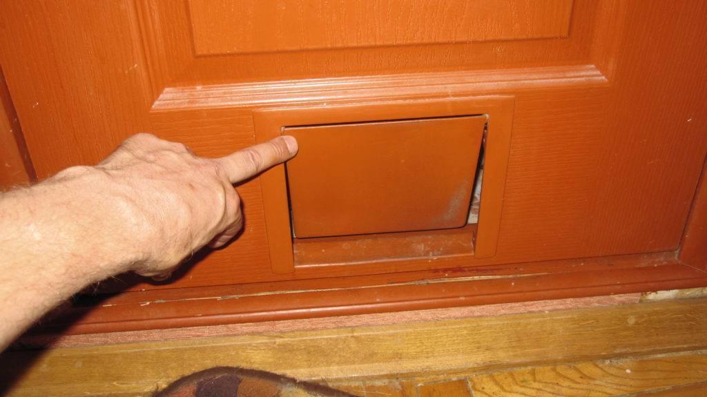Лаз в двери для кошки, как сделать?