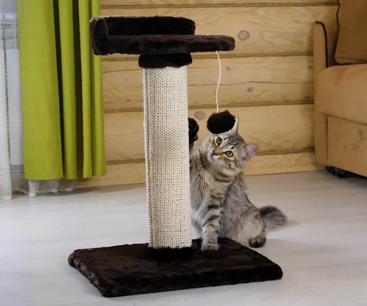 Когтеточки для кошек: размеры разных видов дряпок и пошаговые инструкции по их изготовлению своими руками