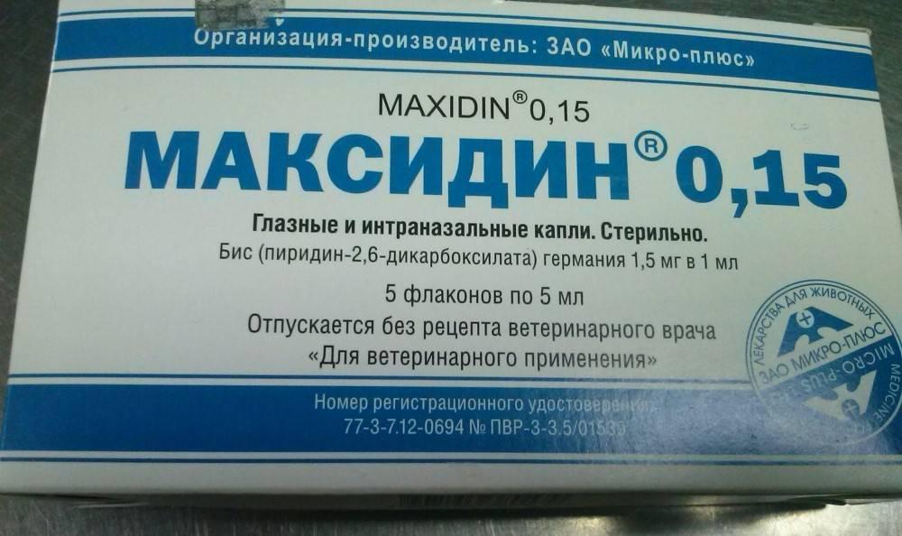 Показания и инструкция по применению максидина для кошек