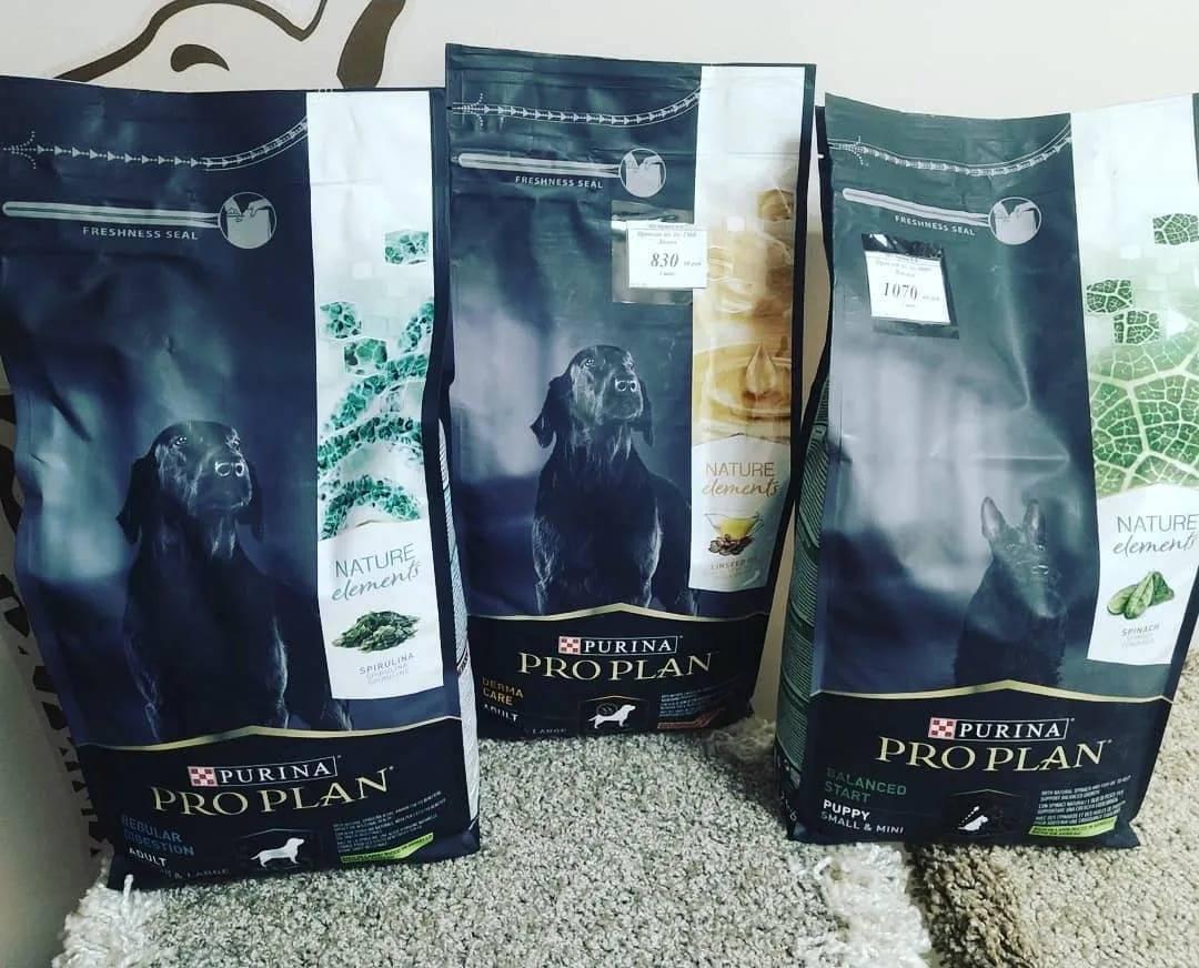 Вкусная еда для собак — корм пурина