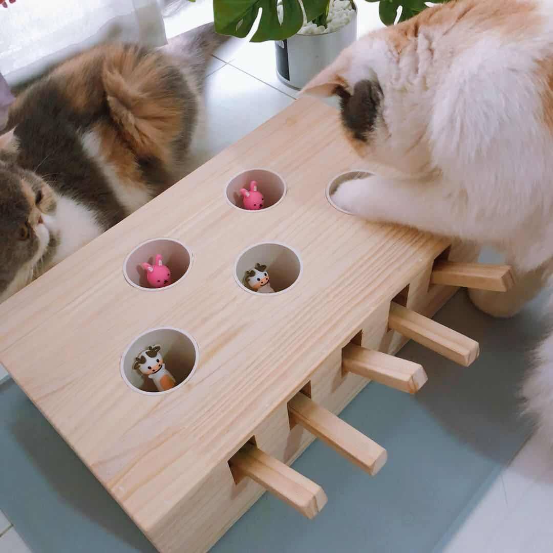 Больше 10 идей с фото игрушек для кошек своими руками!