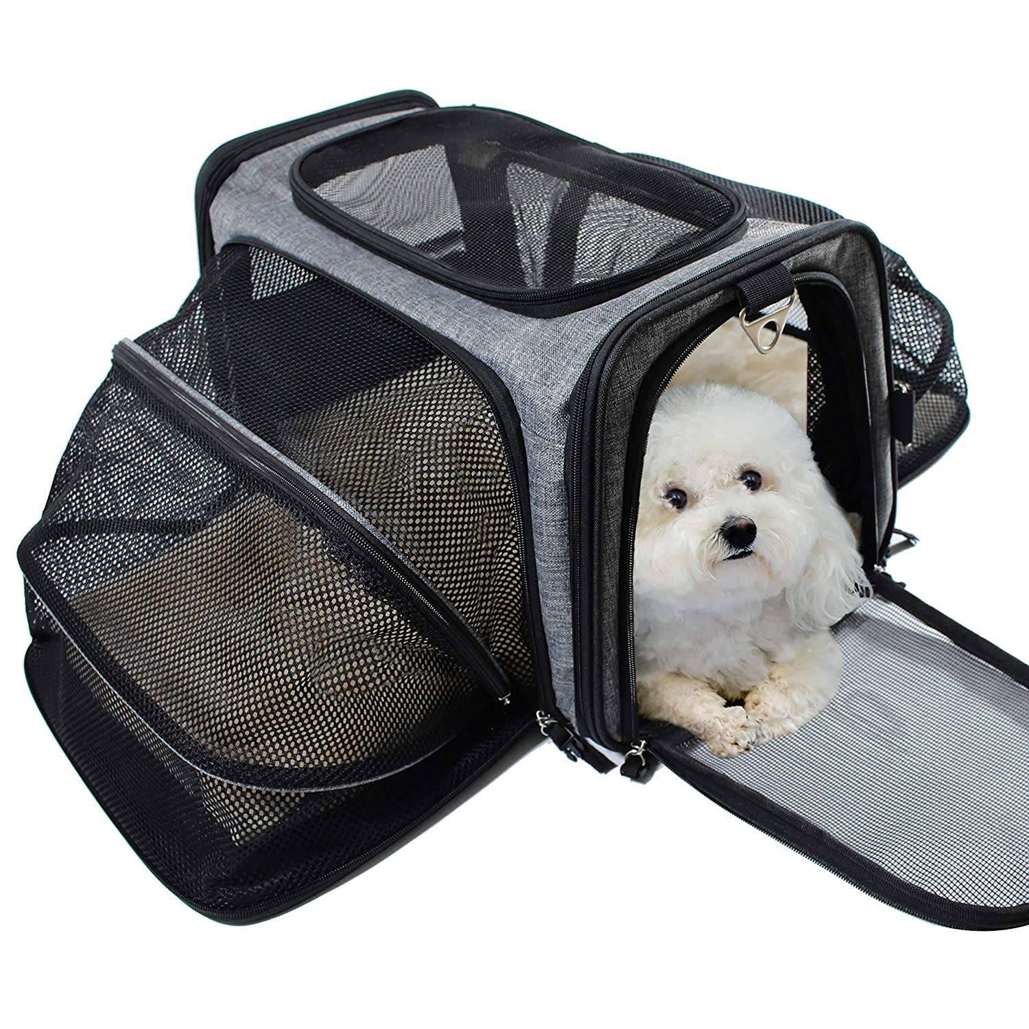 Обзор переносок для собак и подробная инструкция по их изготовлению