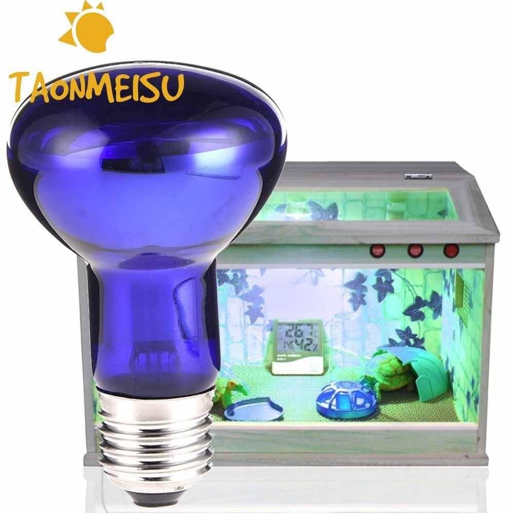 Ультрафиолетовая лампа для черепах: выбор и использование освещения для аквариумов и террариумов с красноухими и сухопутными черепахами