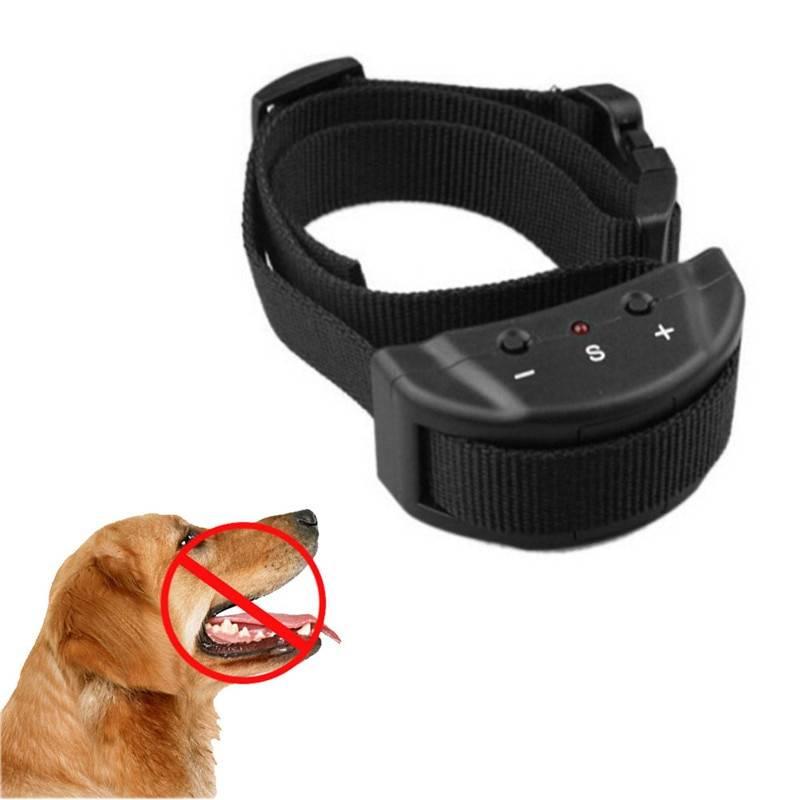 Ошейник антилай для маленьких собак: стационарный ультразвуковой, цена, как работает устройство, спрей, принцип