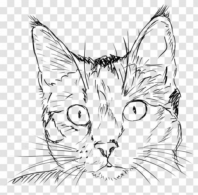 Как рисовать животных: кошки и их анатомия