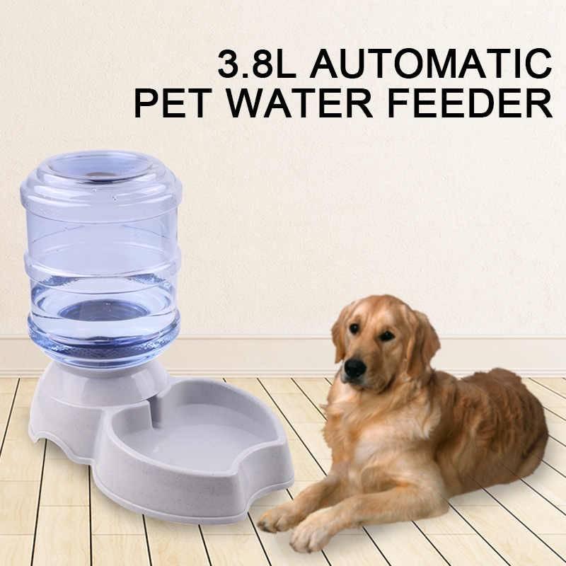 Площадки для выгула собак: требования и необходимое оборудование