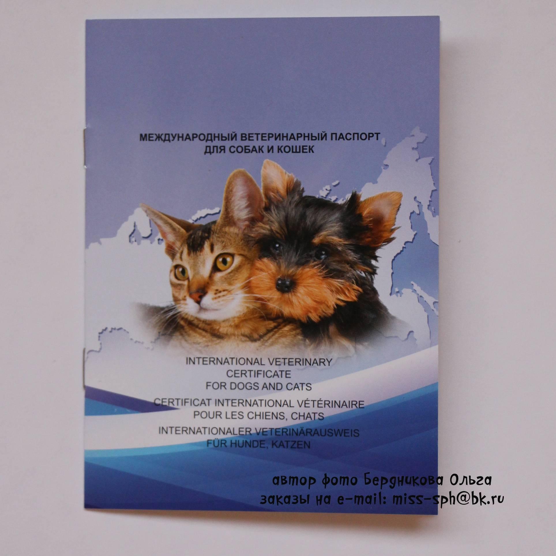 Ветеринарный паспорт: срочное оформление в москве
