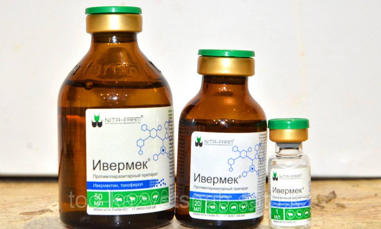Противопаразитный препарат широко спектра – ивермек