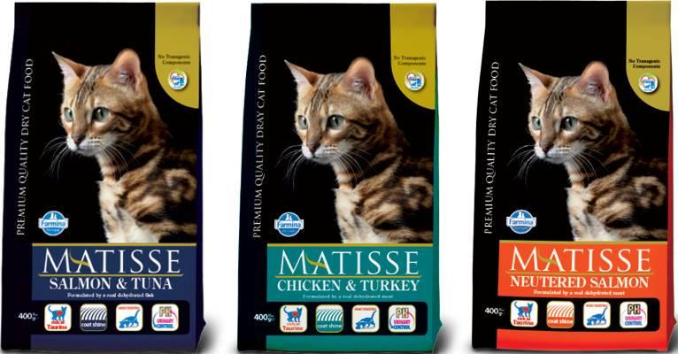 ᐉ обзор корма для кошек matisse - ➡ motildazoo.ru