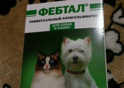 Фебтал для собак