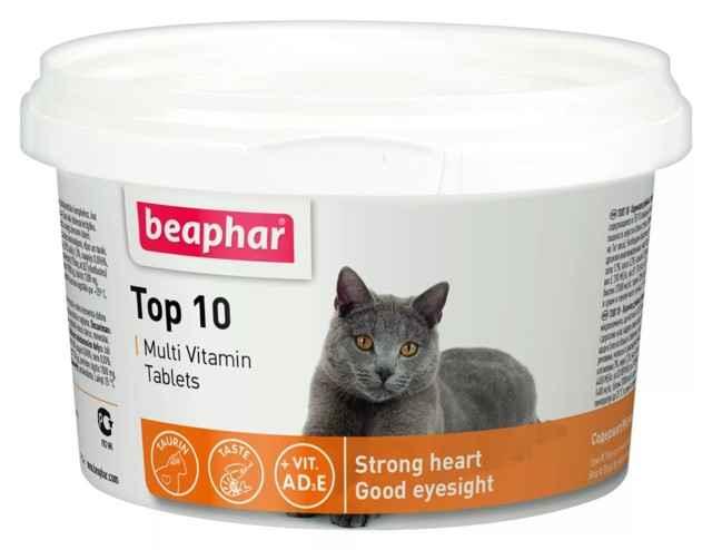 11 лучших витаминов для кошек и котов - рейтинг 2021 года (топ на январь)