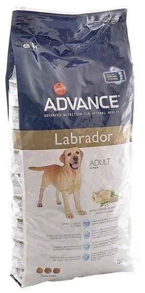 Корм для собак advance («эдванс», «адванс»): описание линейки, анализ состава, преимущества и недостатки вида питания