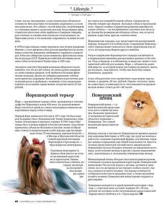 Померанский шпиц — особенности породы