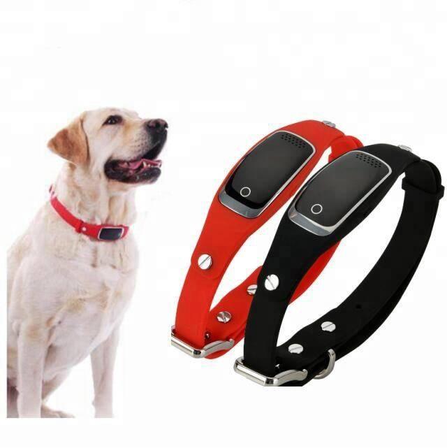 Gps трекер ошейник для собак - цена, отзывы и обзор лучших моделей