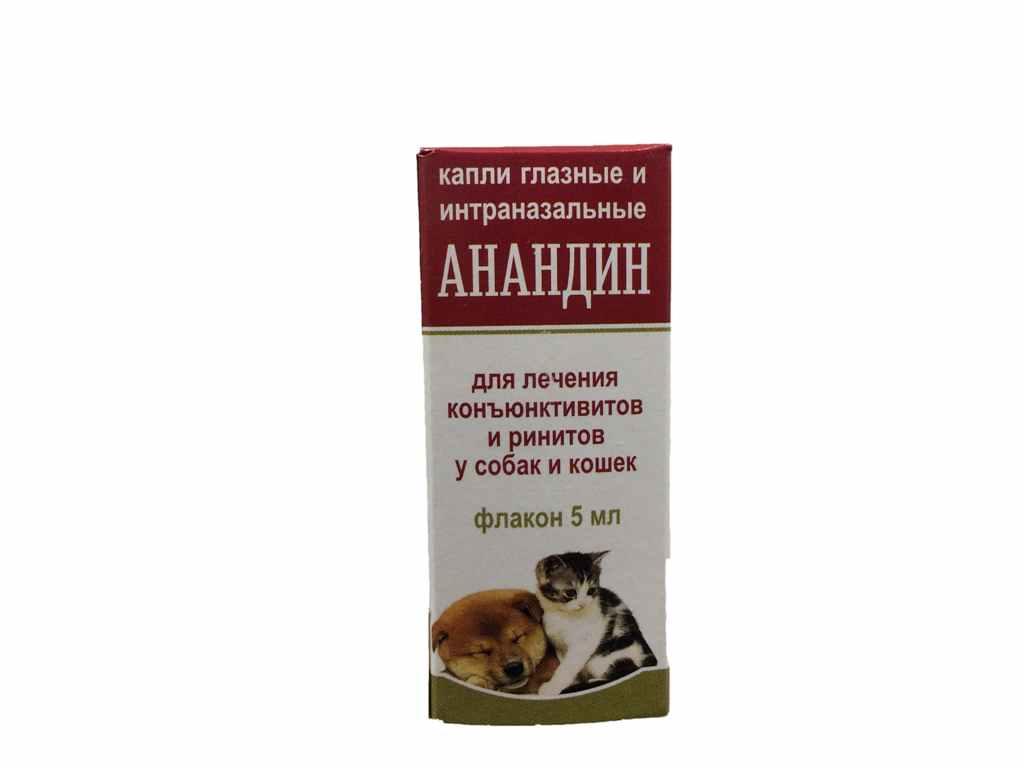Анандин (капли, раствор) для кошек и собак | отзывы о применении препаратов для животных от ветеринаров и заводчиков