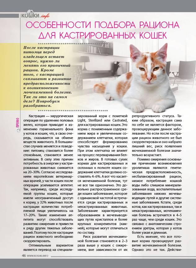 Стандарты диетотерапии при заболеваниях почек и мочевыделительного тракта