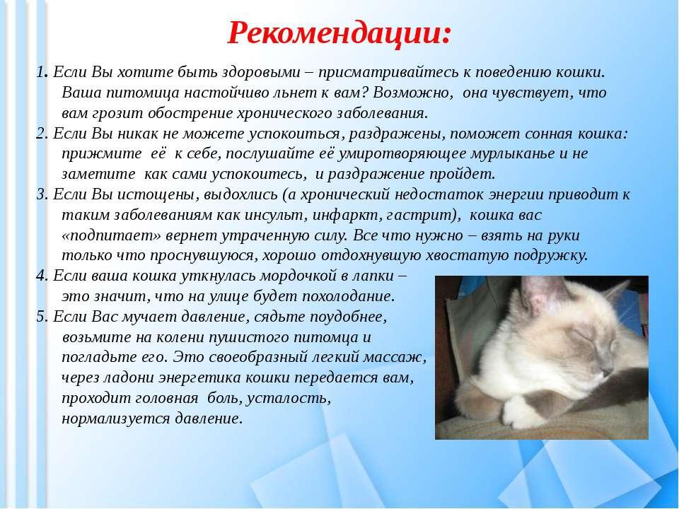15 основных проблем в поведении и содержании кошек и пути их решения