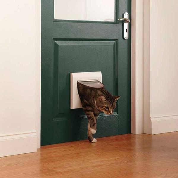 Дверца для кошек: купить или сделать самому?