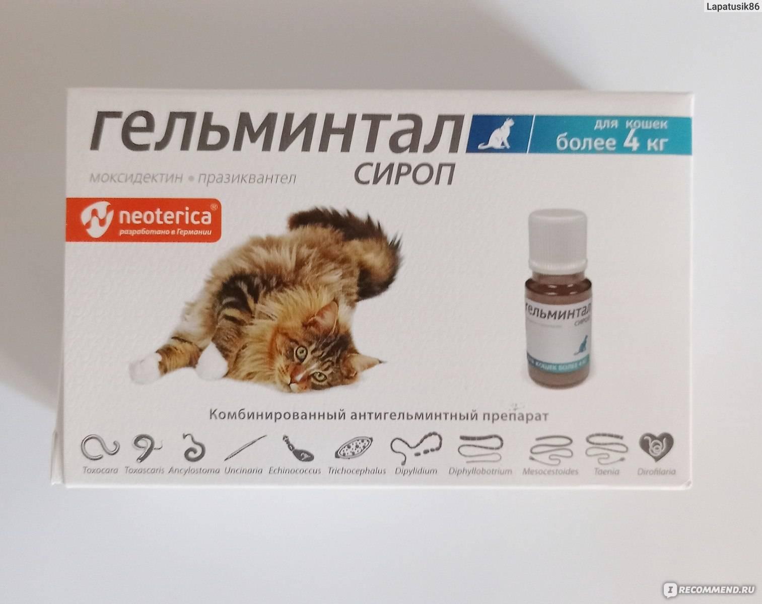 Гельминтал для кошек: капли на холку, таблетки, сироп, инструкция и цена