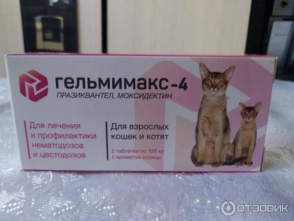 Гельмимакс для кошек: инструкция и показания к применению, отзывы, цена