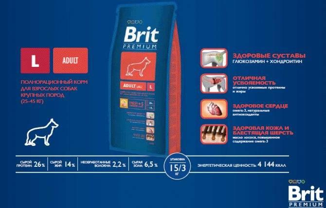 Brit premium корм для кошек: отзывы, где купить, состав