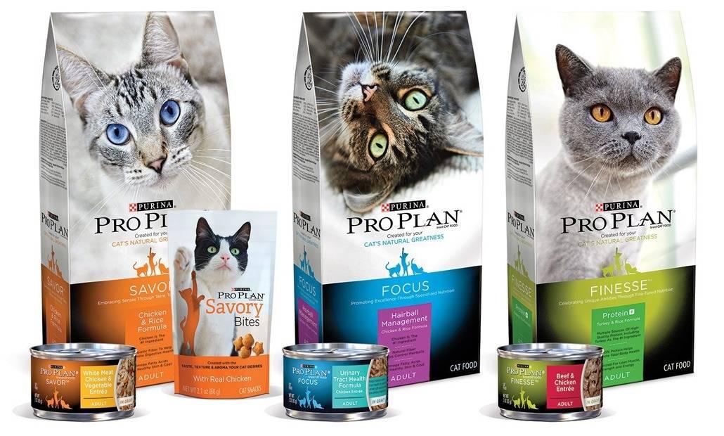 Корм проплан (pro plan) для кошек: стерилизованных и кастрированных котов, для котят, состав, производитель, виды