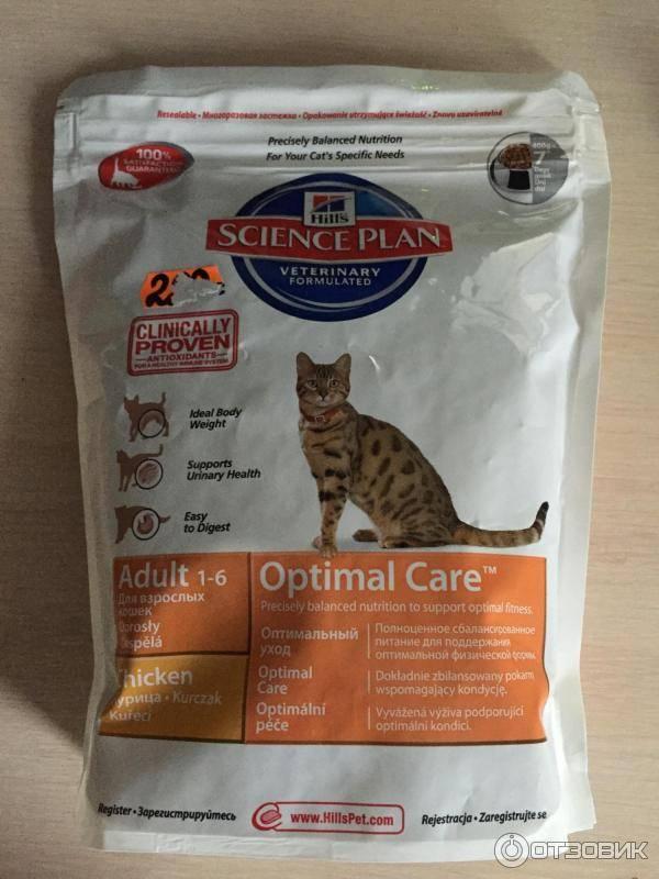Hill's корм для кошек: отзывы, где купить, состав