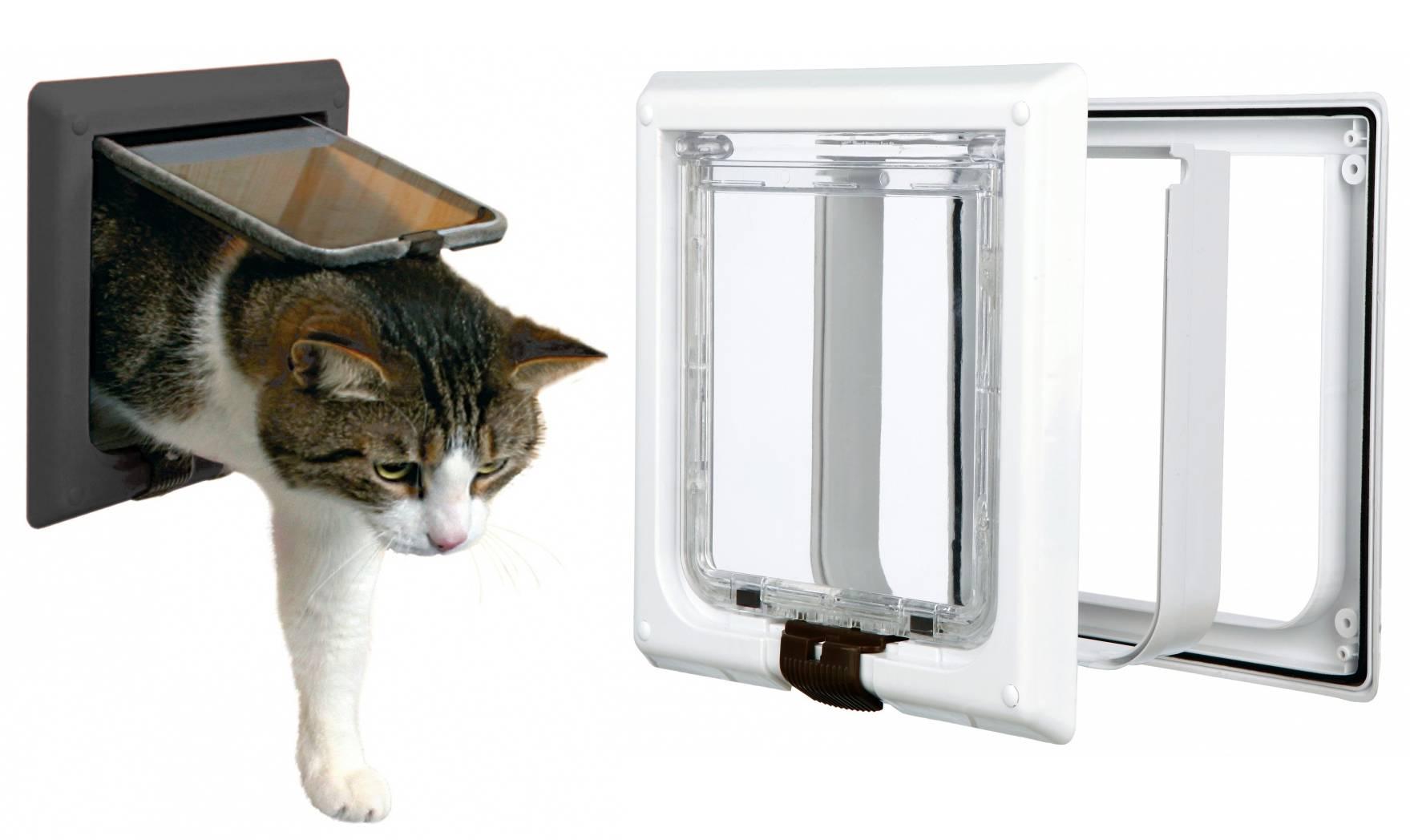 Как сделать правильный выбор дверцы для кошки без лишних хлопот - мир кошек