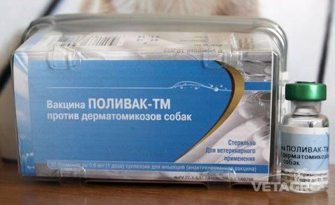 Поливак тм для собак – вакцина от грибковых заболеваний