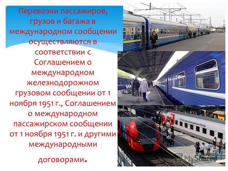 Правила перевозки животных в поездах ржд 2021 г.: провоз жд транспортом россии (скачать приказ минтранса о провозе в свежей редакции)