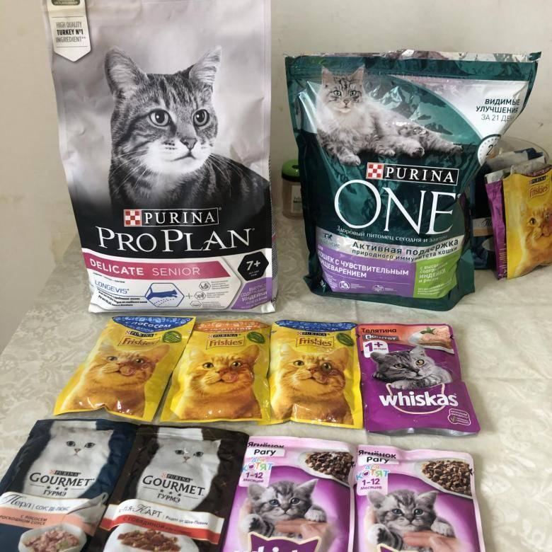 Корм фрискис (friskies) для кошек — отзывы владельцев, ветеринаров