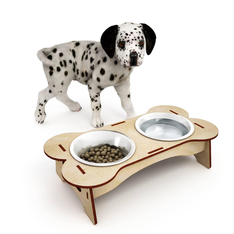 Какая миска подойдет для вашей собаки?