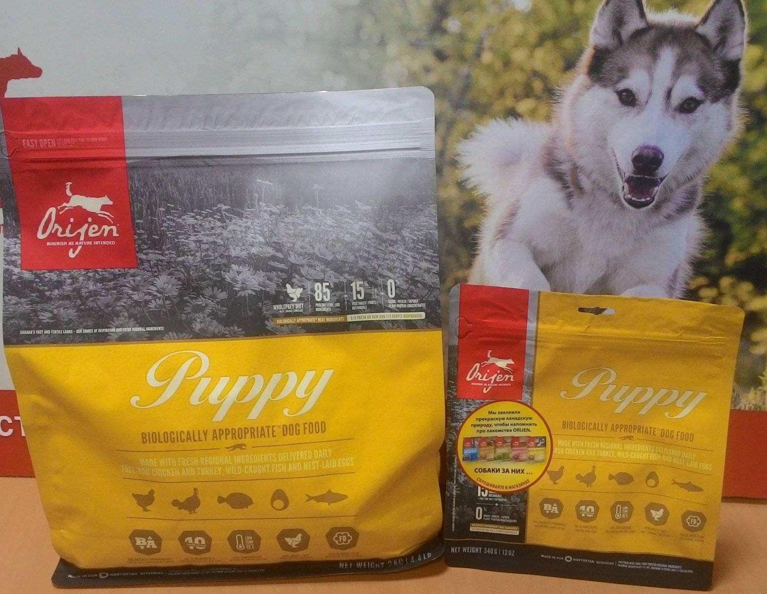 Как правильно перевести собаку на сухой корм с натурального: собаке сложнее перейти с сырого мяса на сухой корм — перевод по этой схеме