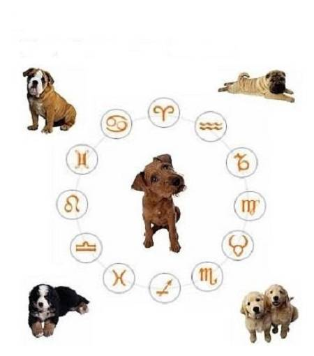 Собаки по знакам зодиака