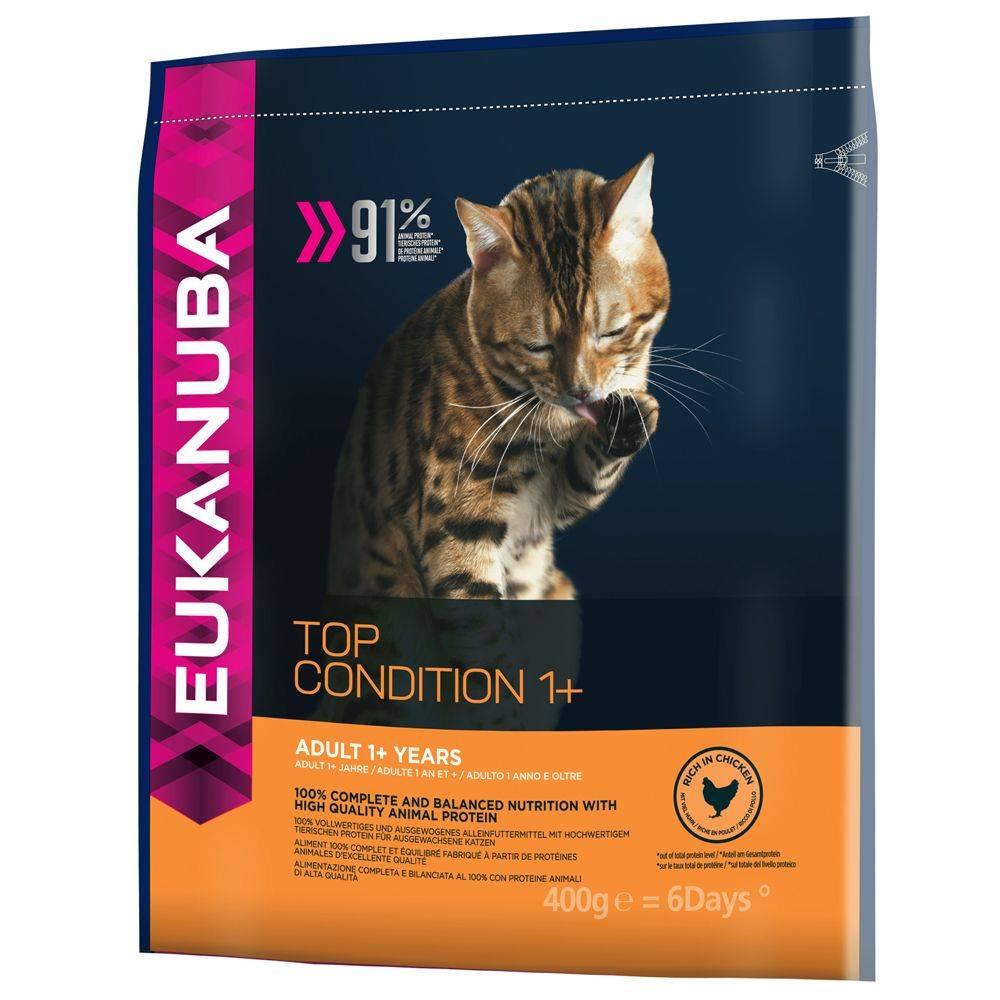 Отзывы о кормах супер-премиум класса для кошек