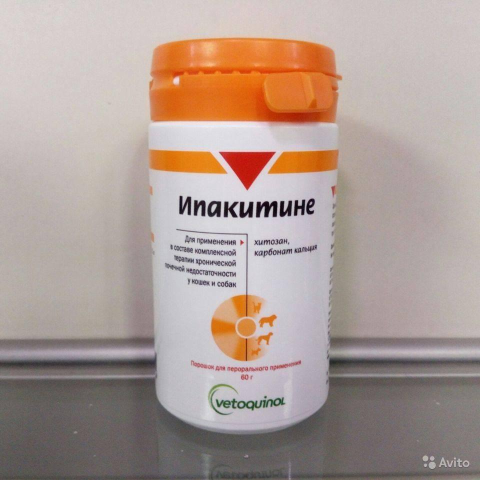 Пронефра (pronefra), препарат для лечения хпн у кошек и собак
