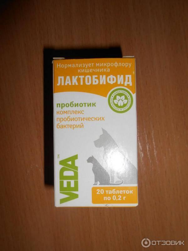Lactobif: инструкция, отзывы, аналоги, цена в аптеках - медицинский портал medcentre24.ru
