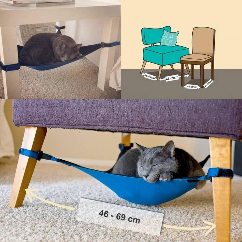 Уход и содержание кошки в домашних условиях