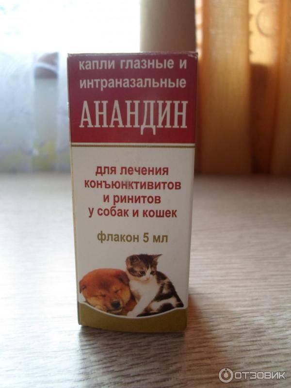 Анандин для кошек:  инструкция по применению препарата